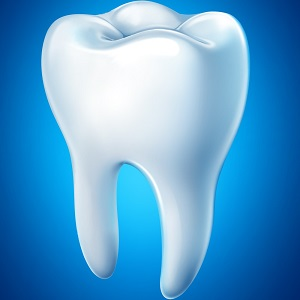 ฟัน - ένα δόντι