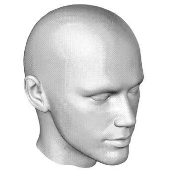 سر - hoved