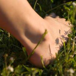 ข้อเท้า - ένας αστράγαλος
