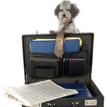 a briefcase - الحقيبة