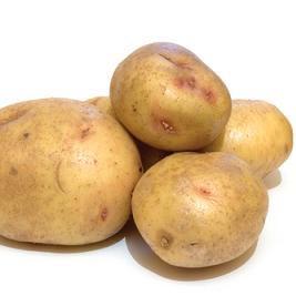 patates - terpomo