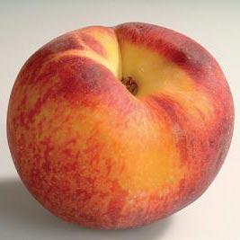 ροδάκινο - persik