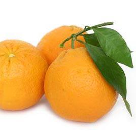 πορτοκάλι - arancia