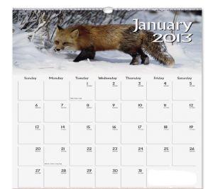 Ιανουάριος - januar
