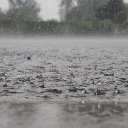 pluvo - 雨