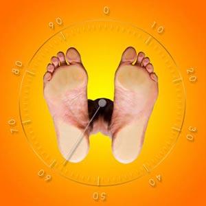 الوزن - βάρος
