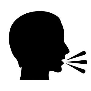 govoriti - a vorbi